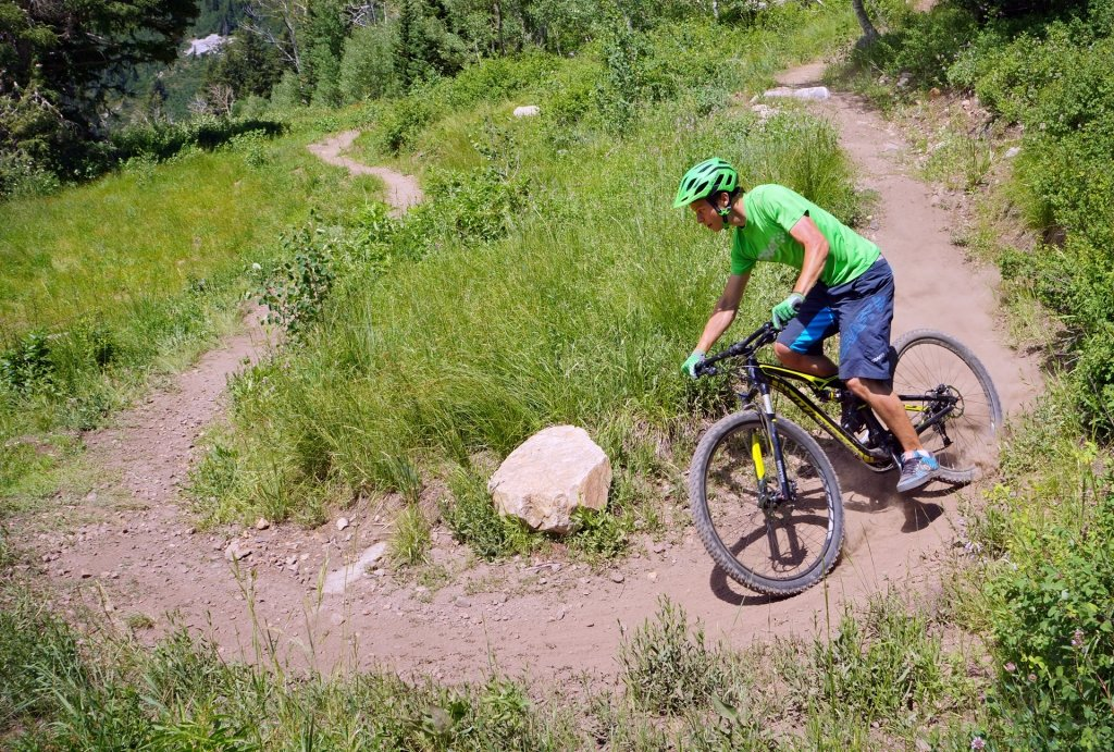 Specialized Camber Downhill
