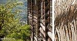 Das Lilehammerlicht gibt dem Holz eine ganz besondere Farbe und Struktur