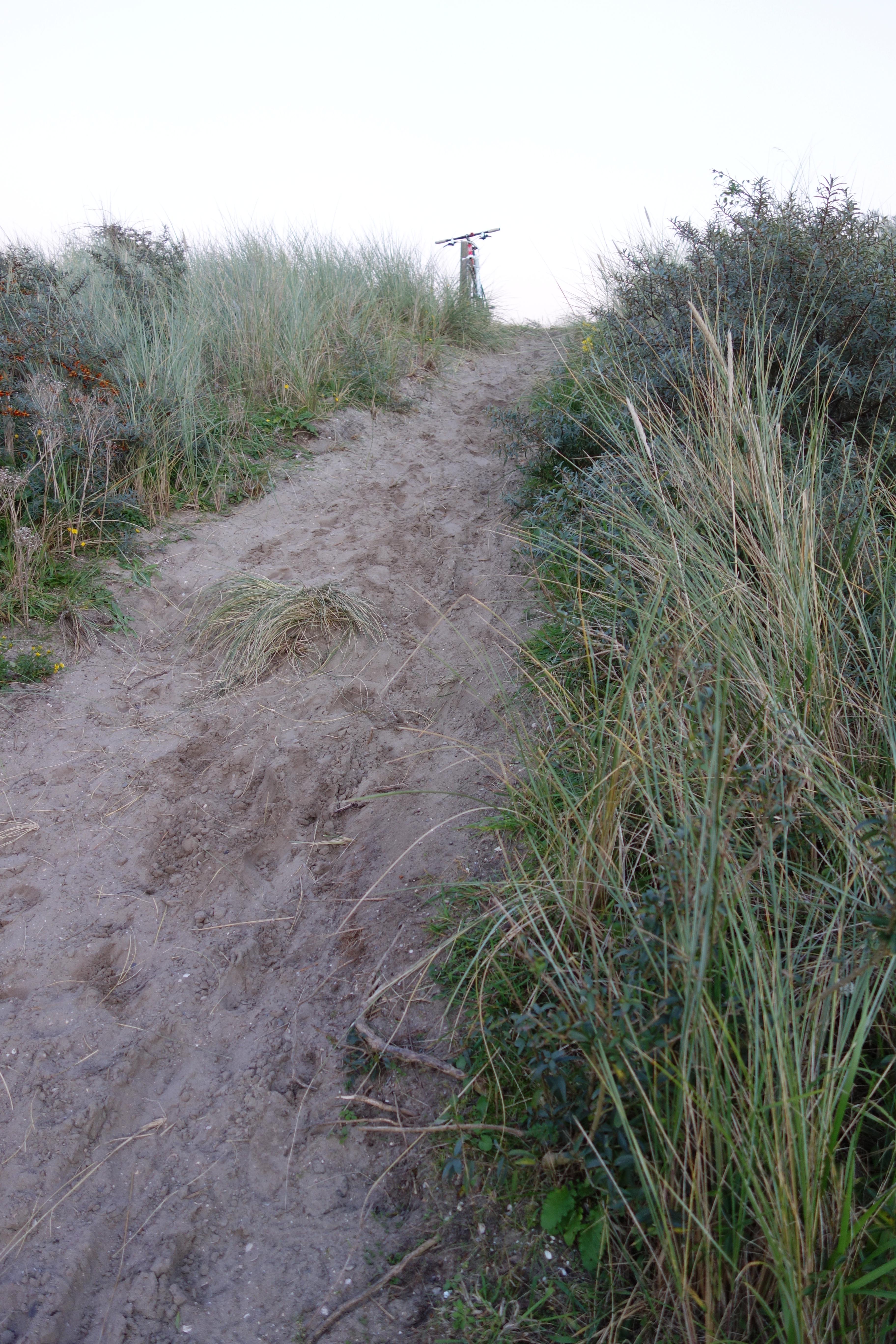 Singletrail seeland